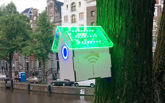 Awesome Leiden - Wifi Tree Amsterdam